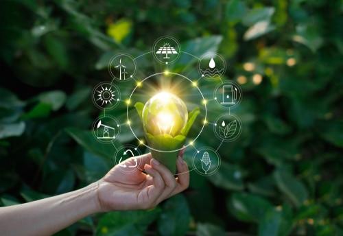 BelPV: jouw brug naar een duurzame levensstijl